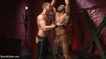 Gay Boy Bondage Tumblr -