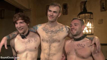 Gay Leather Men Video - Bound Gods Live: New House Slaves Tested By The Kink Olympics